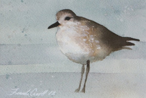 Shorebird 5x7 - sold
