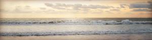 Francha Cavitt San Diego Beaches
