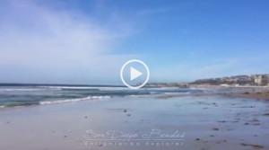Summer San Diego Beaches