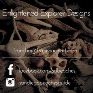 Enlightened Explorer Design Square